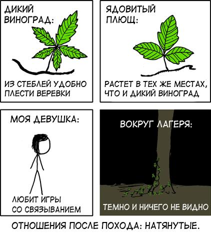 Знай свои стебли